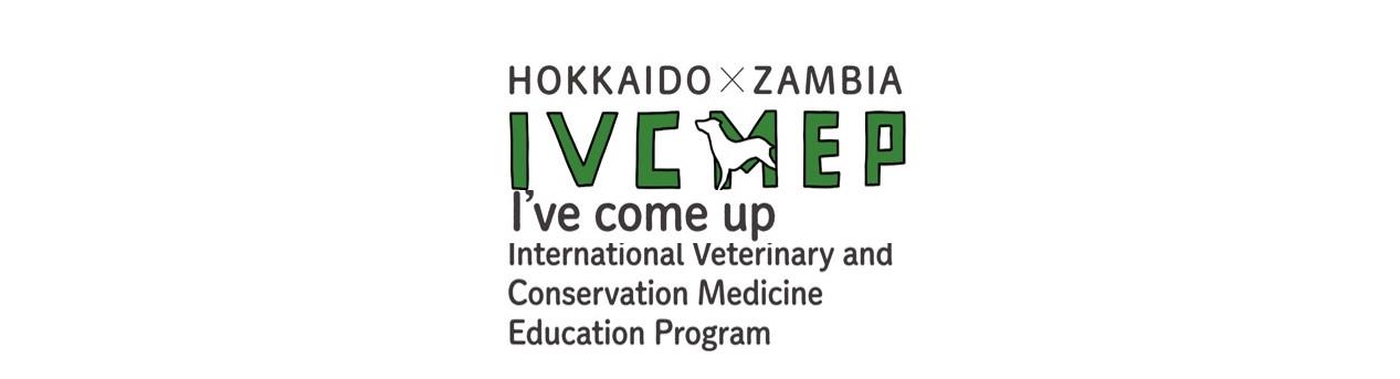 Hokkaido University IVCMEP Program